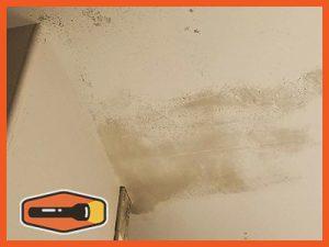 mold at bathroom ceiling